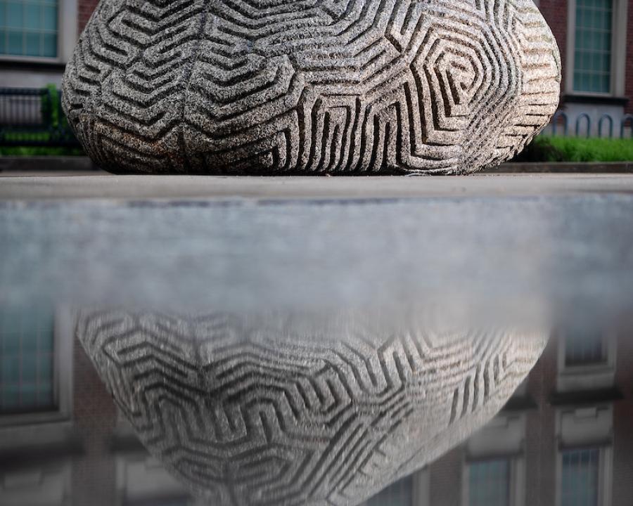 Brain Rock on Anne Cleary Walkway