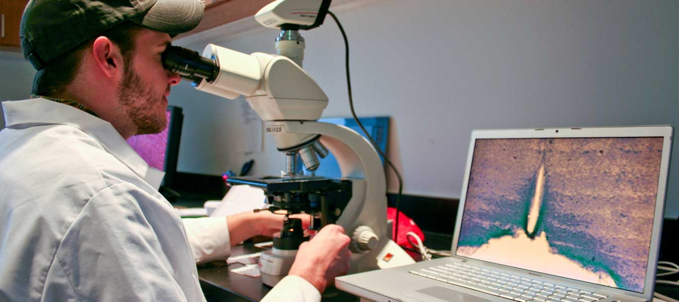A student looking into a microscope
